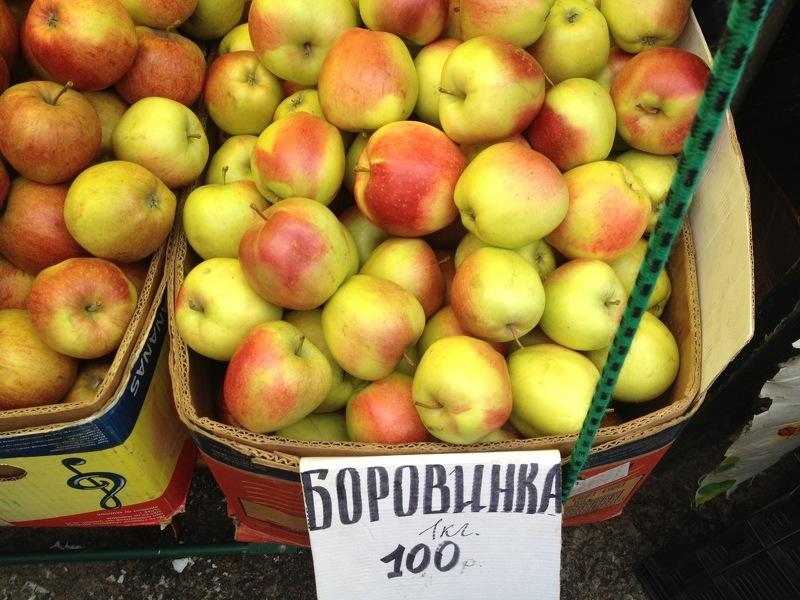 Яблоню Боровинка выращивают во всех регионах России для приготовления сушки