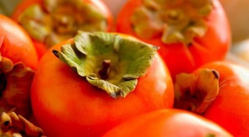 Сорта хурмы с фото: самые вкусные и сладкие, для выращивания в РФ