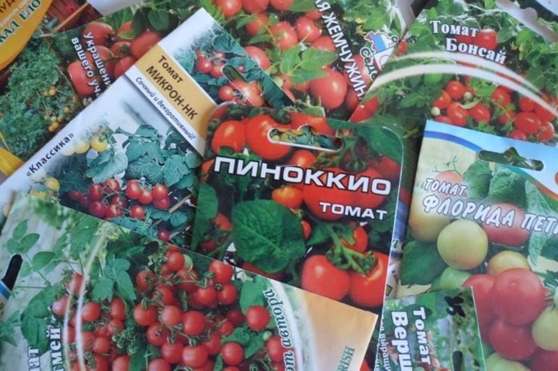 Подходящие для балкона сорта томатов