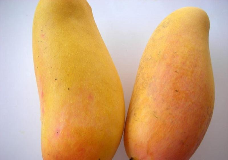 Спелые плоды манго из магазина