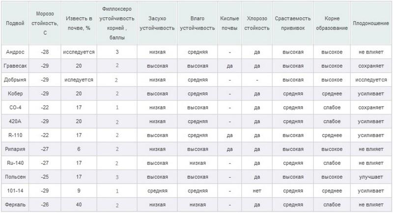 Таблица совместимых подвоев винограда разных сортов