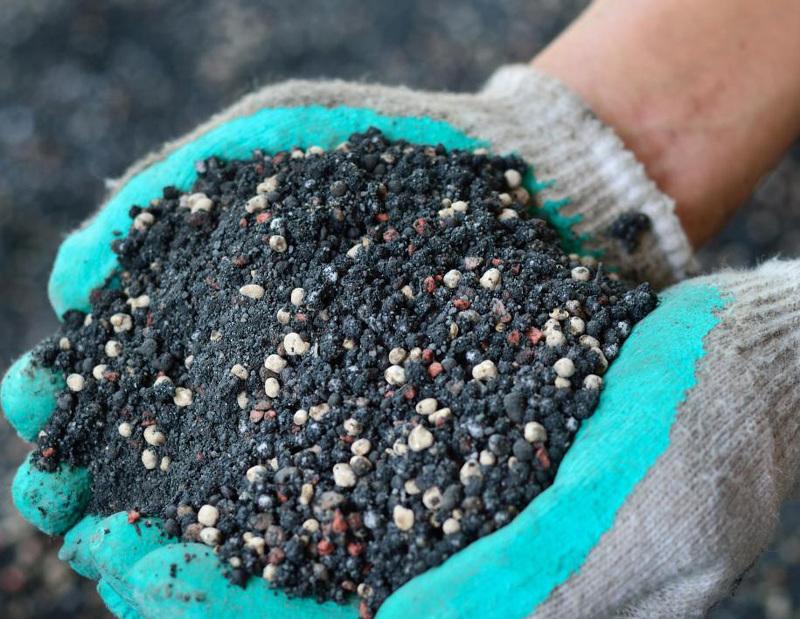 Подкормка смородины осенью суперфосфатом