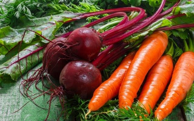 Правильная подкормка свеклы и моркови - гарантия хорошего урожая