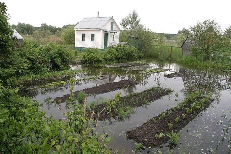 Весенний паводок на дачном участке
