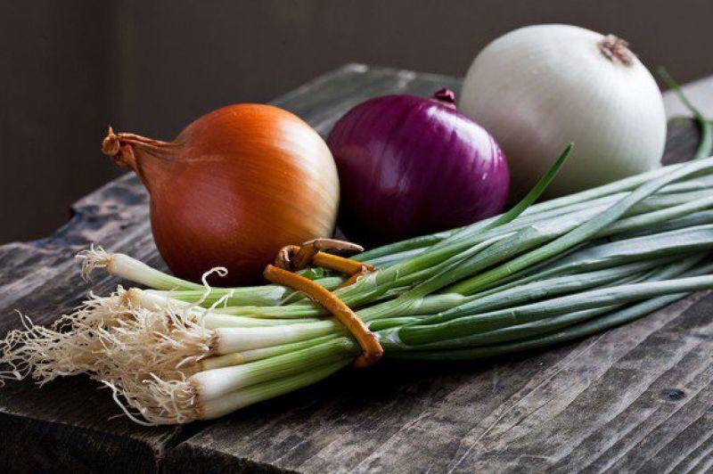 Сорта и виды лука, фото и описание