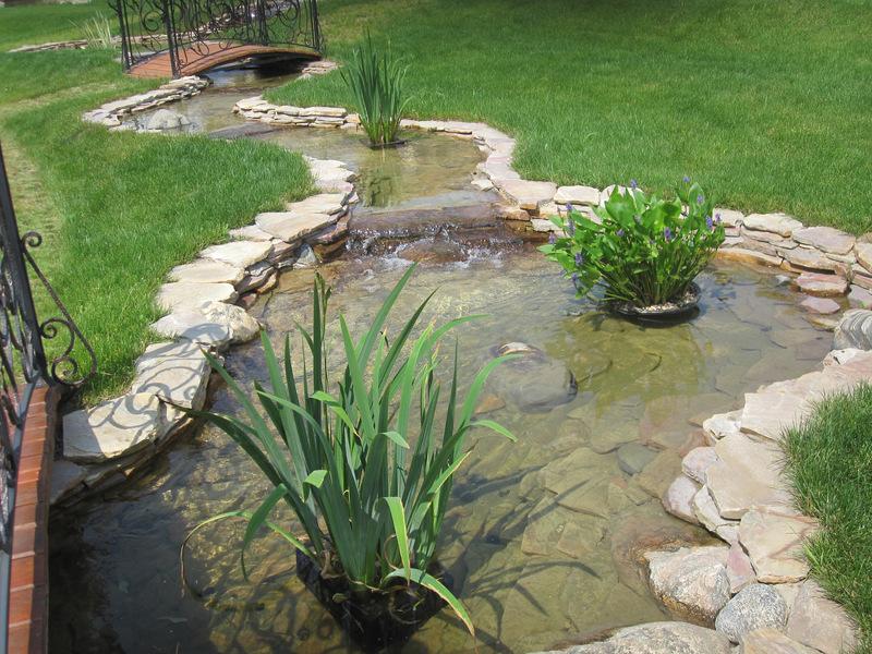 Водоемы в саду причудливых и извилистых форм