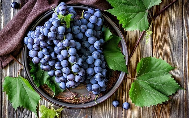 Вред черного винограда при заболеваниях