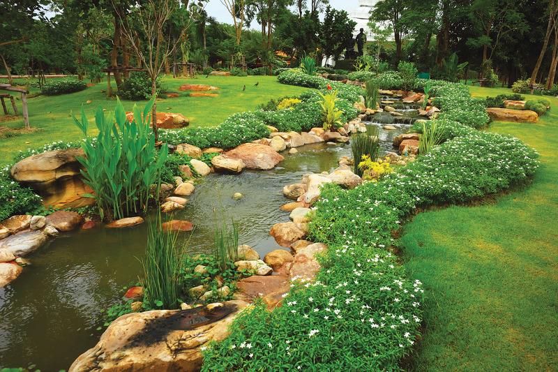 Ручьи в саду