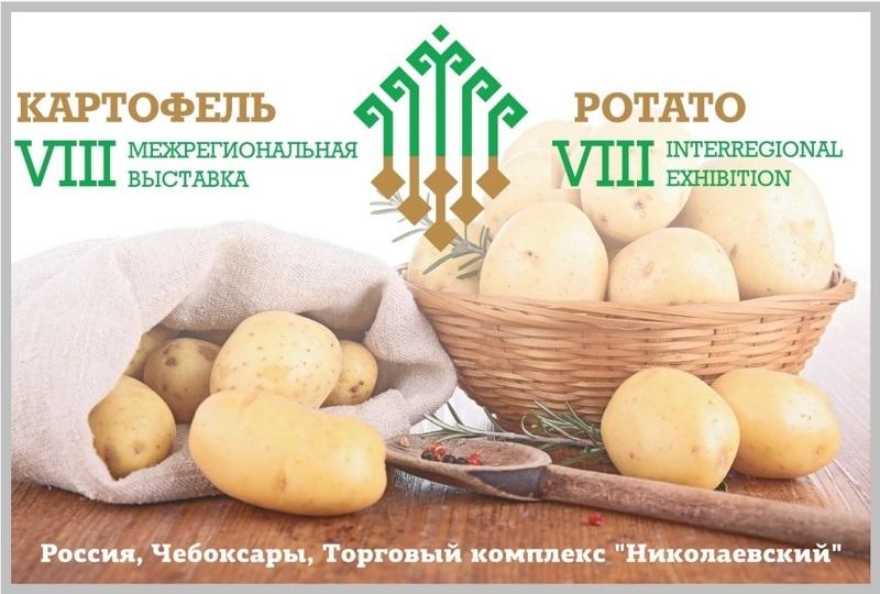 Выставка картофель 2018 чебоксары когда будет