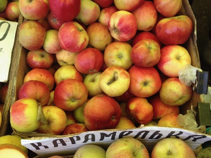 Яблоня Карамелька - лучший сорт для приготовления Шарлотки