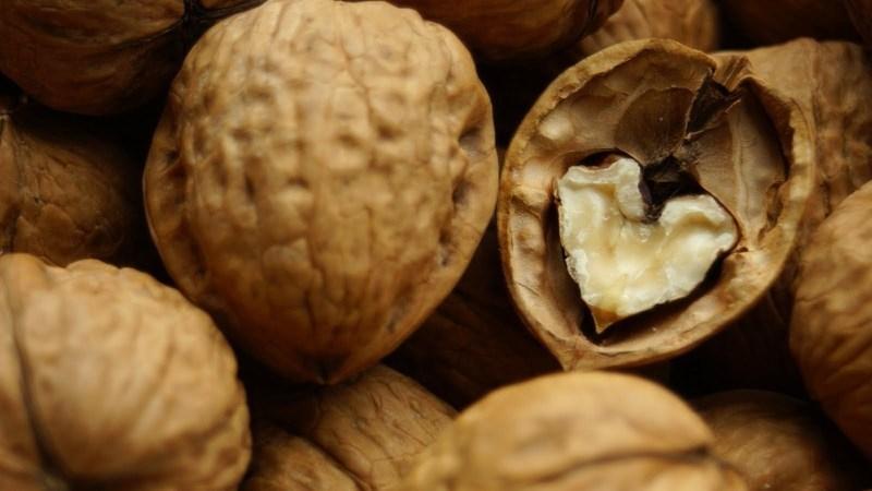 Ядро и перепонки грецкого ореха