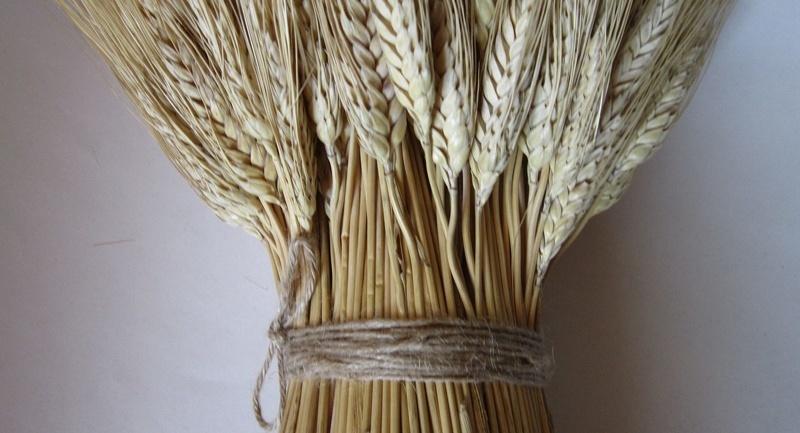 Ставим в углу сноп пшеницы - чтобы задобрить Карачуна и привлечь богатство